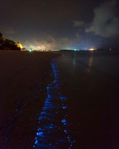Bioluminescent_SeaSparkle_Maldives _4708